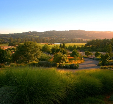 A Week in California Wine Country